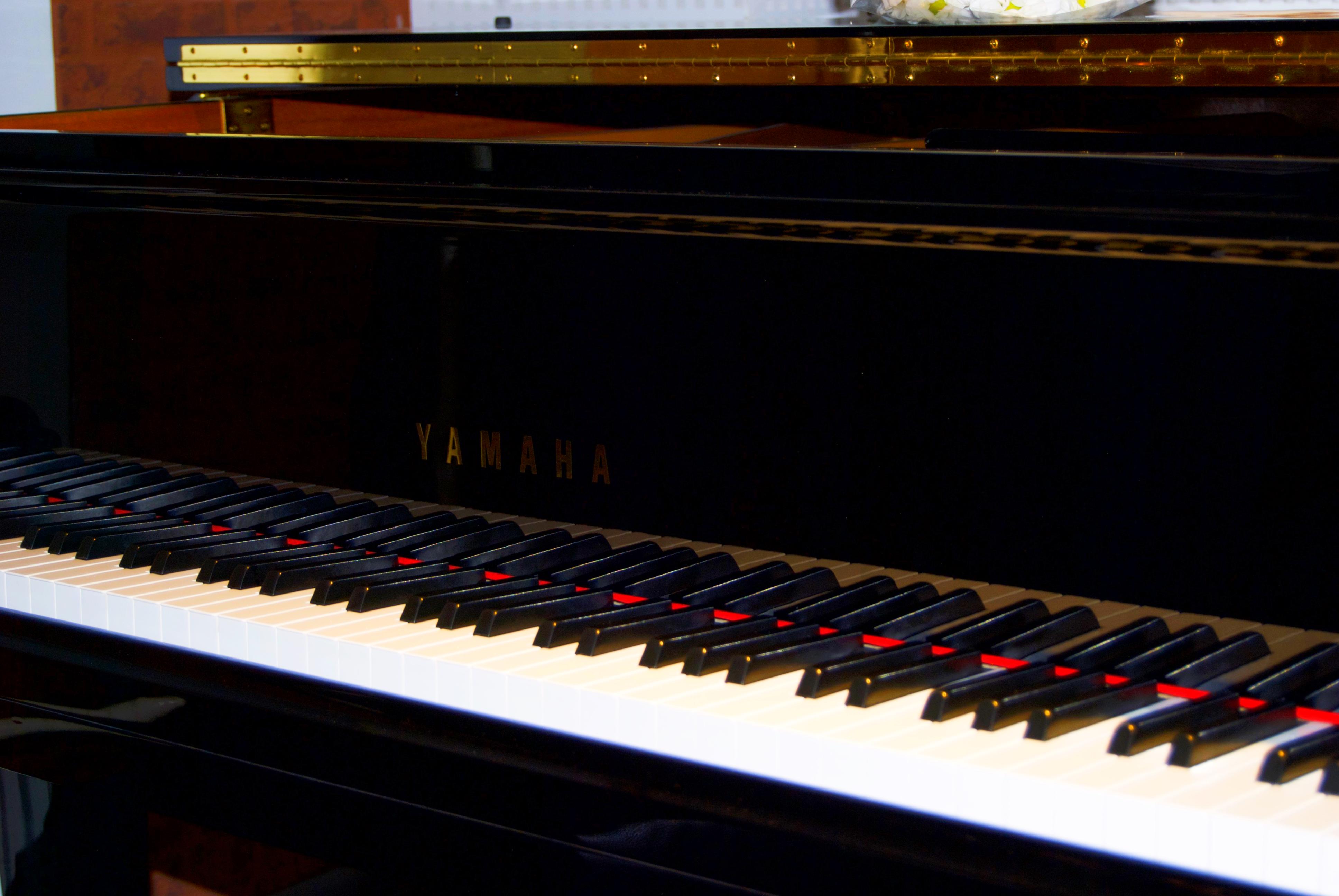 Музыкальное мероприятие проведут для жителей и гостей Первомайского. Фото: Никита Нестеров
