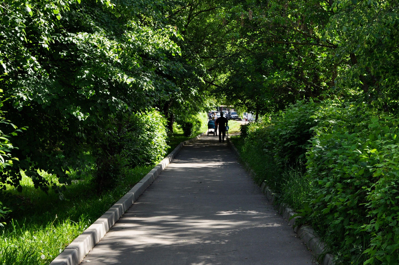 Пешеходную зону благоустроили в Роговском