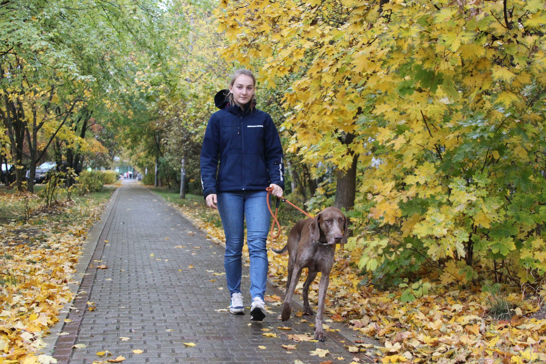 Московские синоптики дали прогноз погоды на субботу
