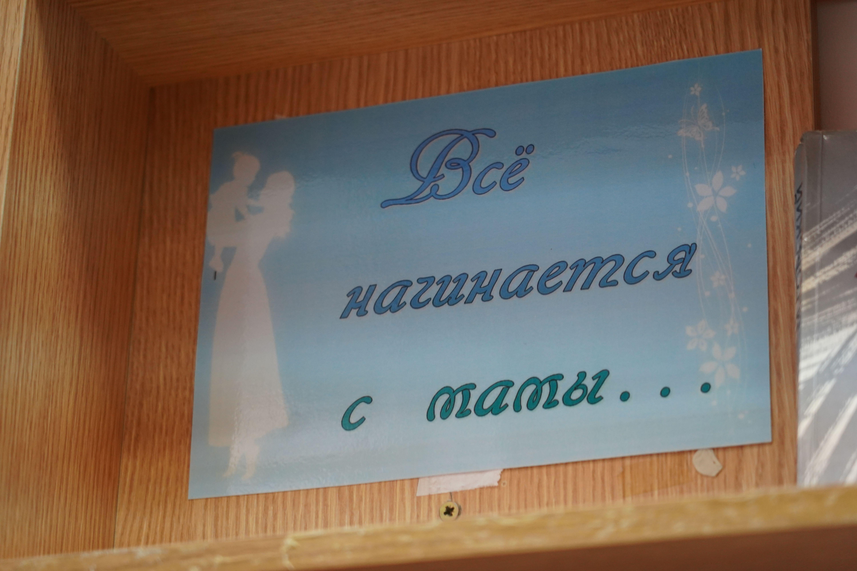Выставку «Все начинается с матери» представили в Троицкой библиотеке №1 имени Михайловых