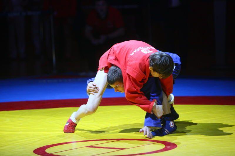 Юноши из Роговского стали призерами турнира по самбо