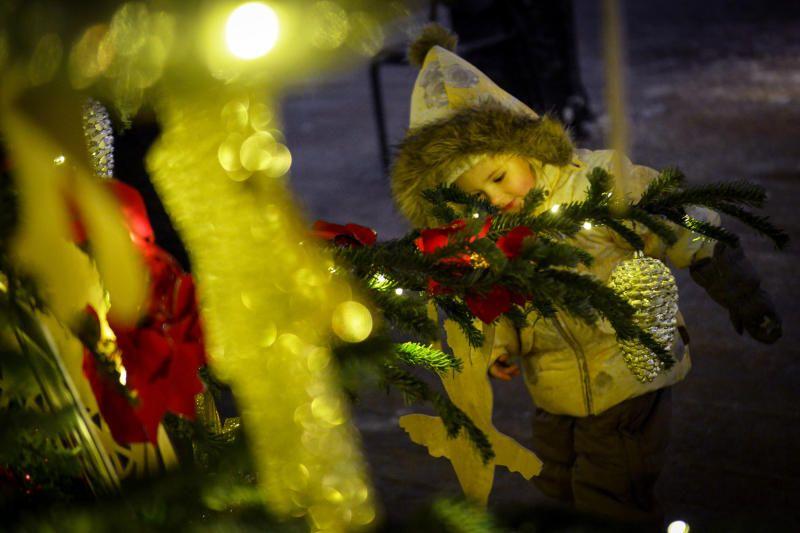 Новогоднюю ель установят в Киевском