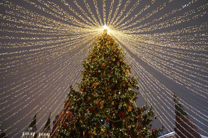 Откуда появилась традиция ставить елку на Новый год