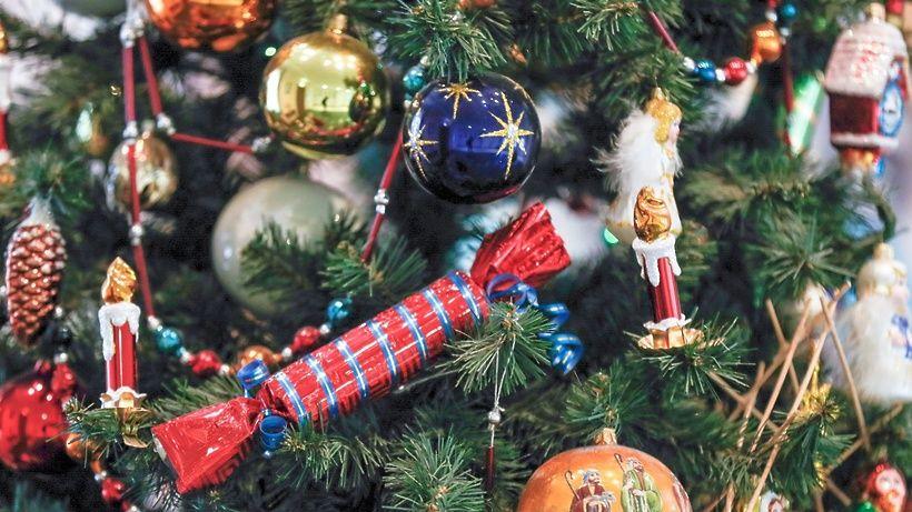 Новогодние ели установят в Первомайском