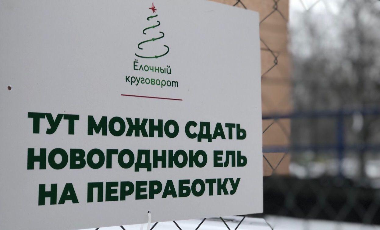 Акцию «Елочный круговорот» запустили в Рязановском