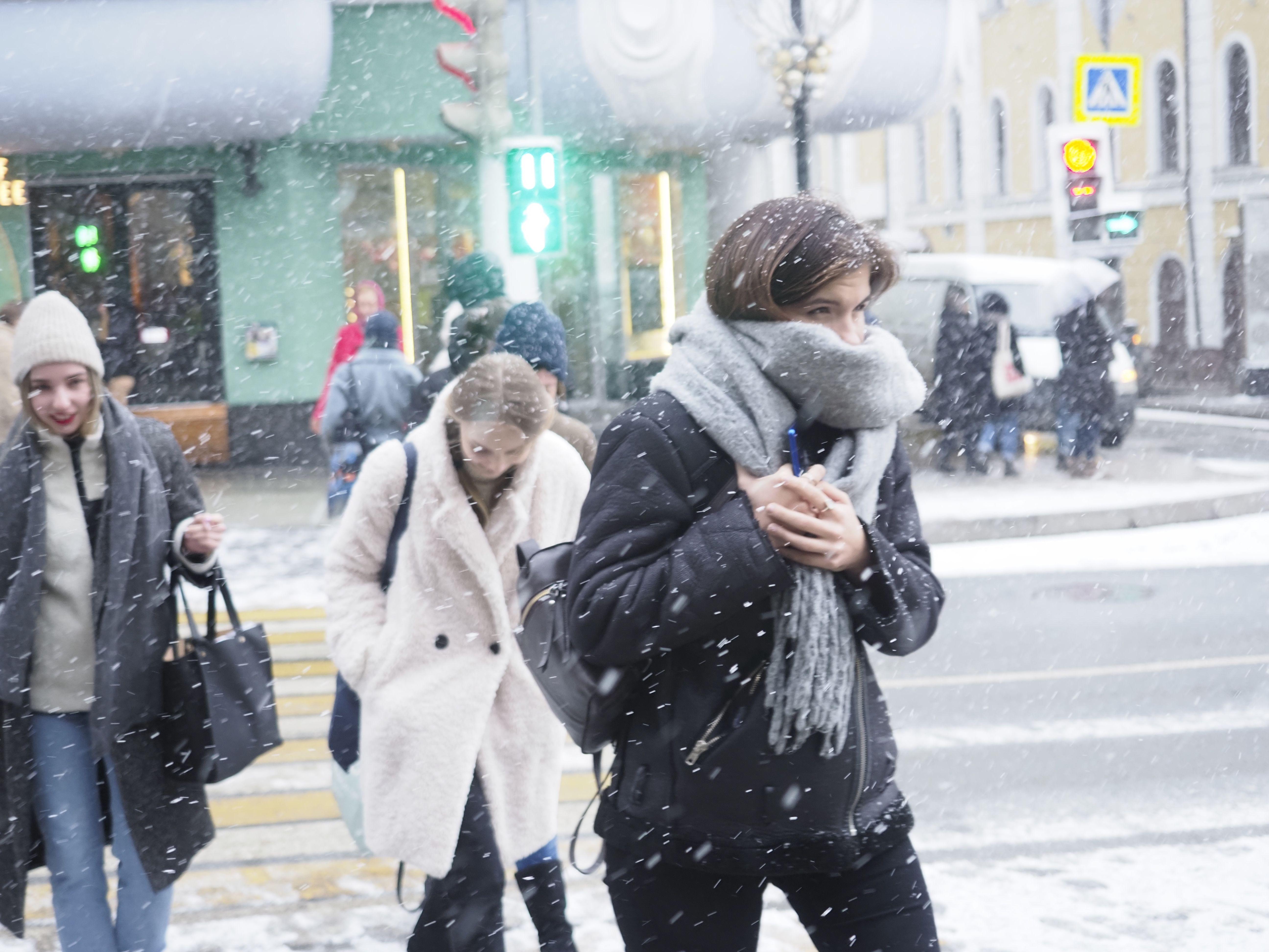 Москвичей предупредили о штормовом ветре в понедельник