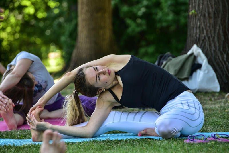 Москвичи определят летнюю программу парков