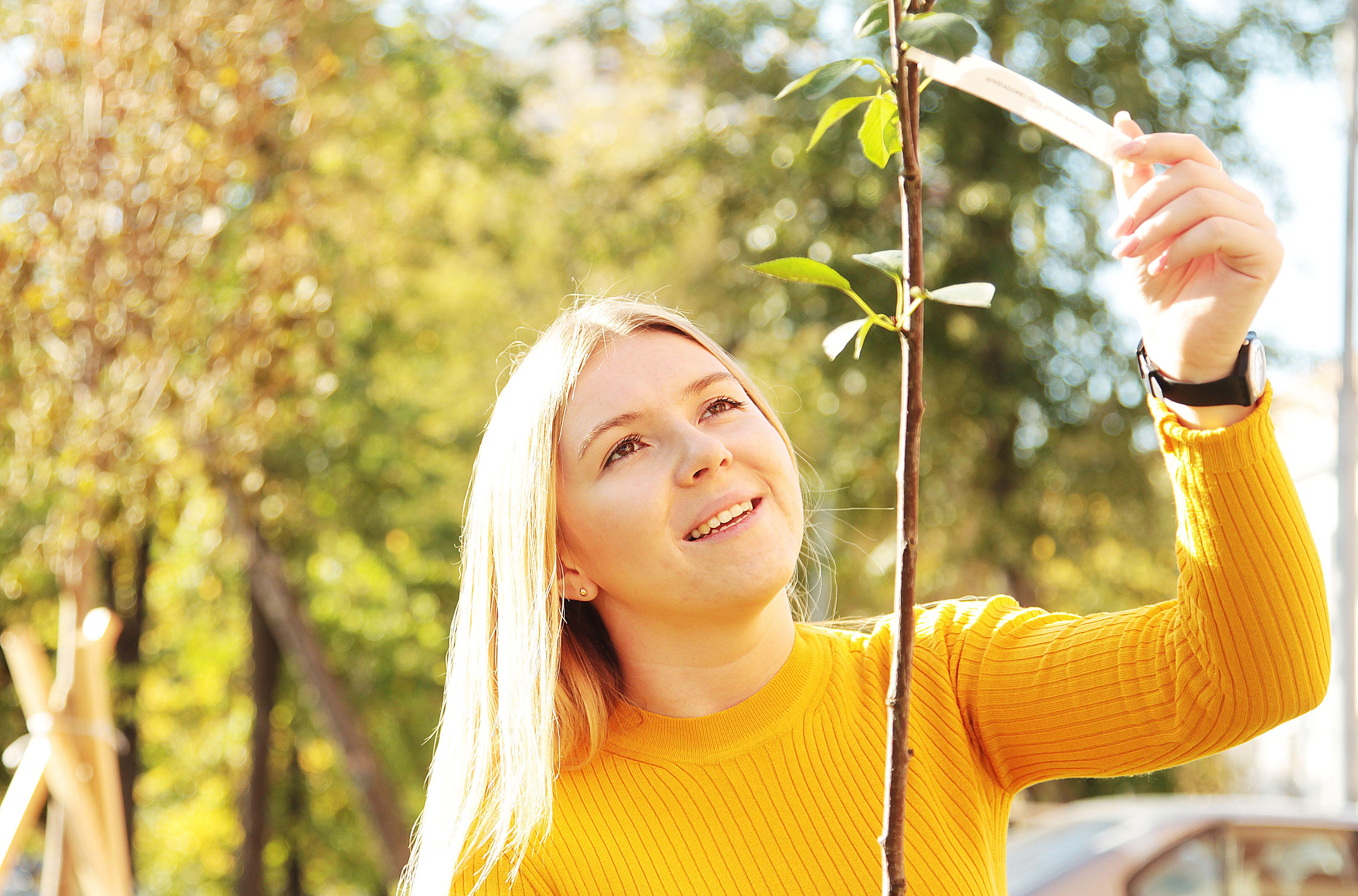 Москвичи решат, как озеленять дворы в 2021 году