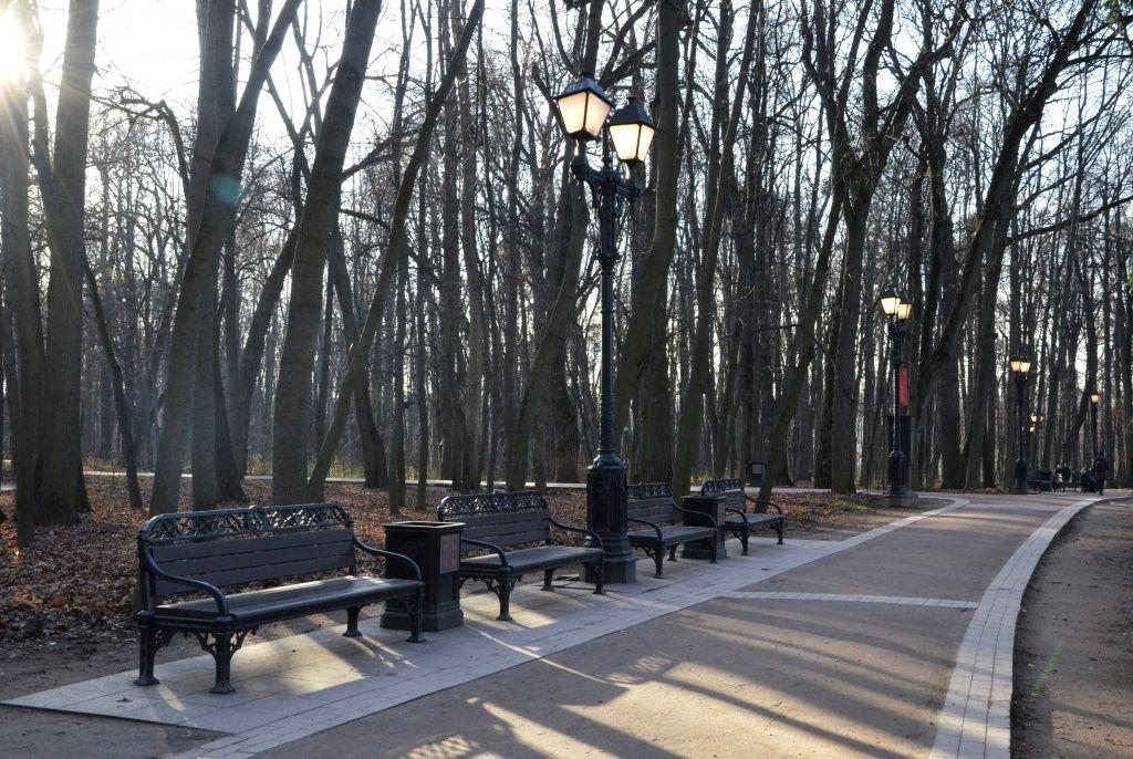 Новый озелененный спортивный парк появится в Филимонковском