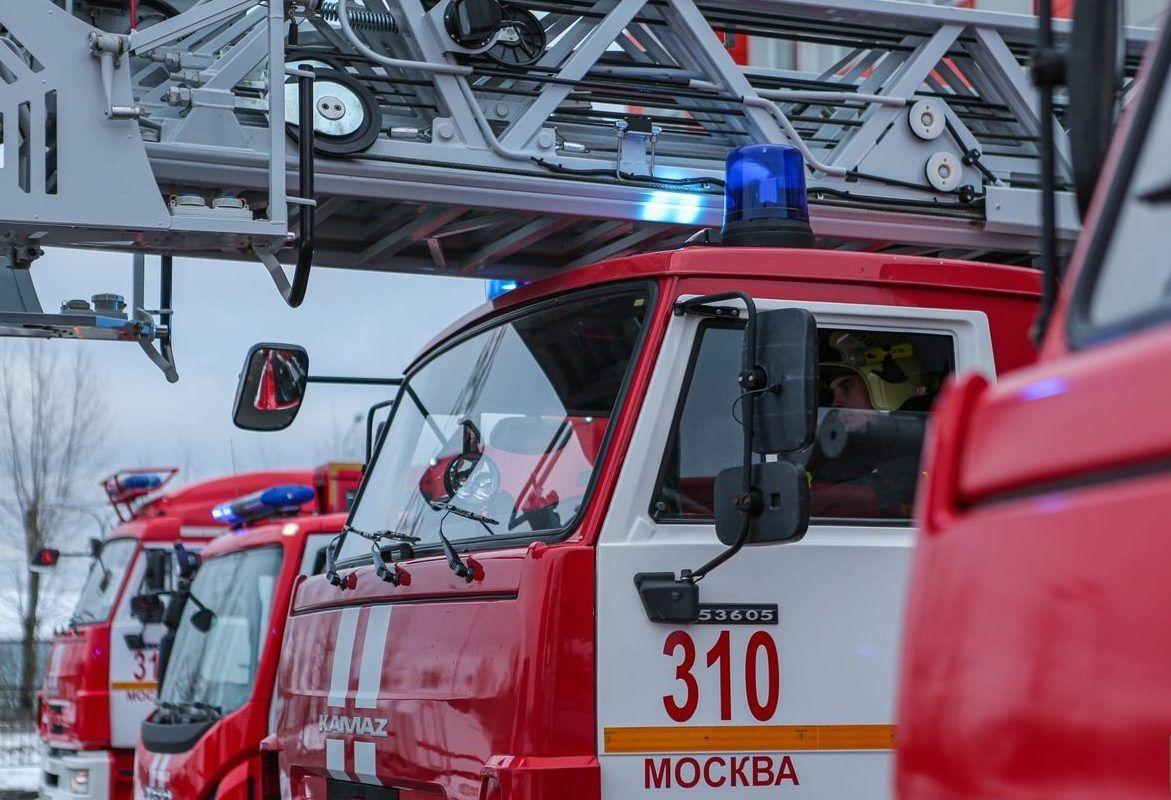 Профилактические меры для предотвращения лесных пожаров приняты в Москве