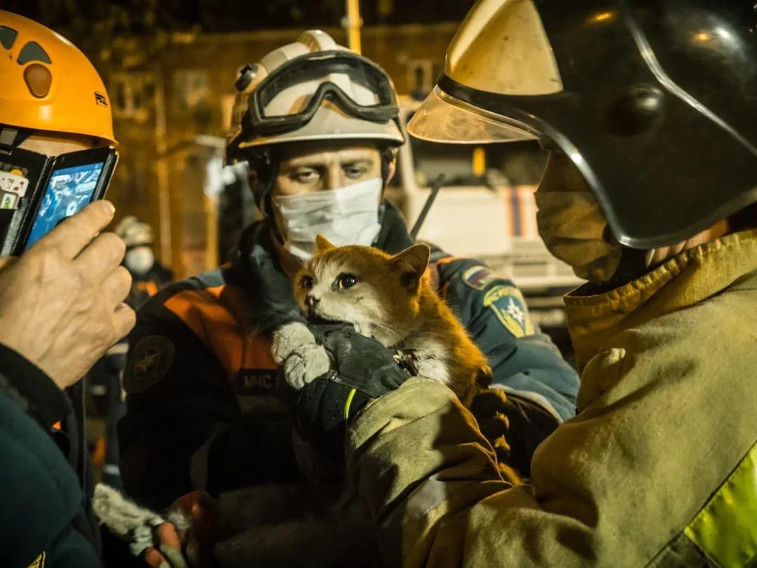 Сотрудник Службы 112 Москвы рассказал о своем участии в спасении при взрыве бытового газа