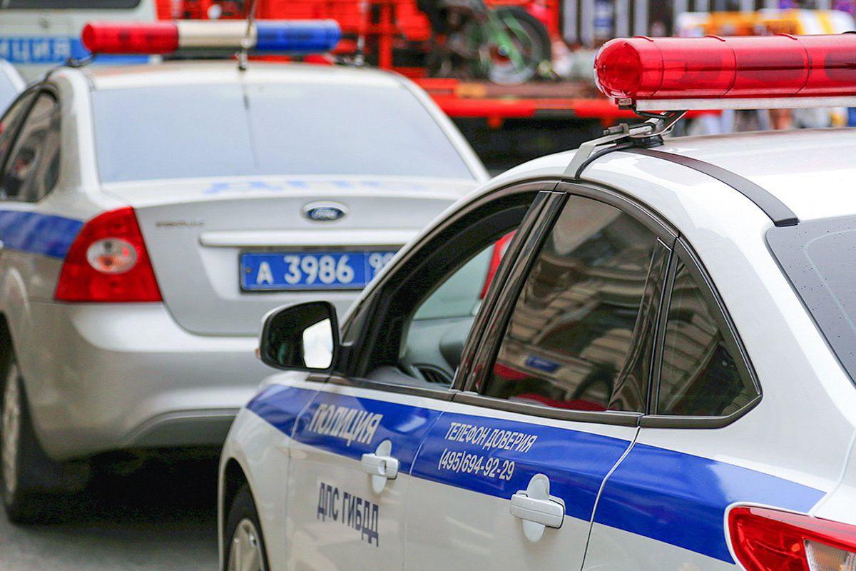 Задержаный на Патриарших прудах не выполнил законных требований полиции