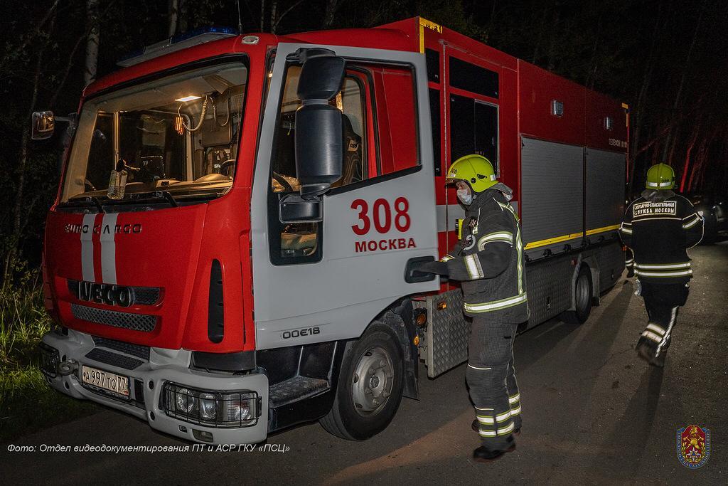 Спасатели и волонтеры нашли потерявшуюся в лесуТиНАОпожилую пару