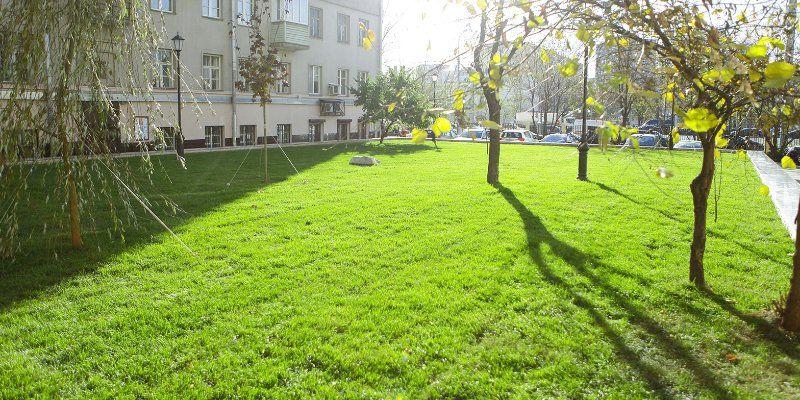 Сезонный покос травы выполнят в поселениях Воскресенское и Кленовское