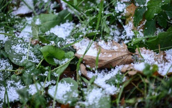 Москвичам пообещали снег на неделе