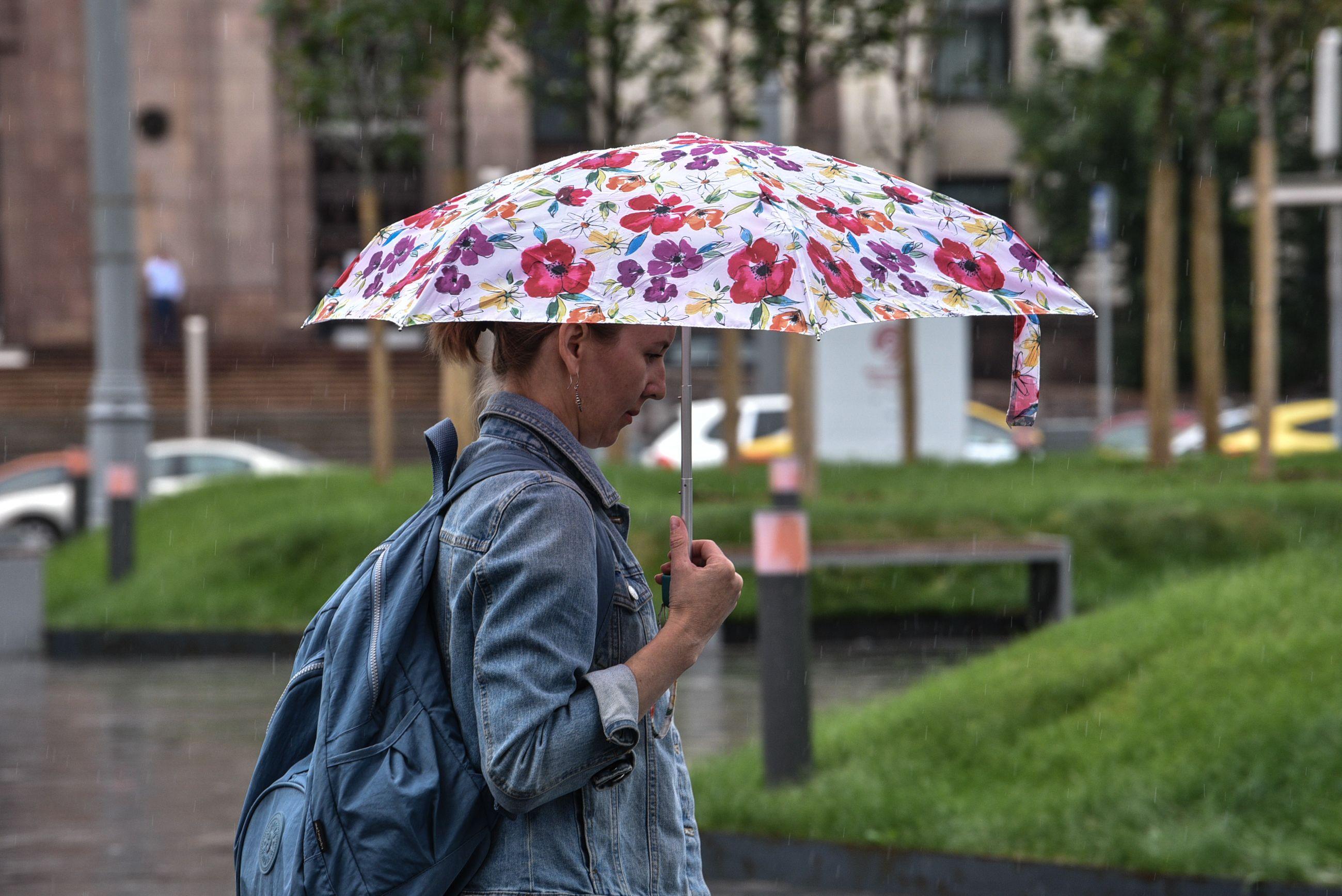 Дождливая погода ожидается в Москве и области