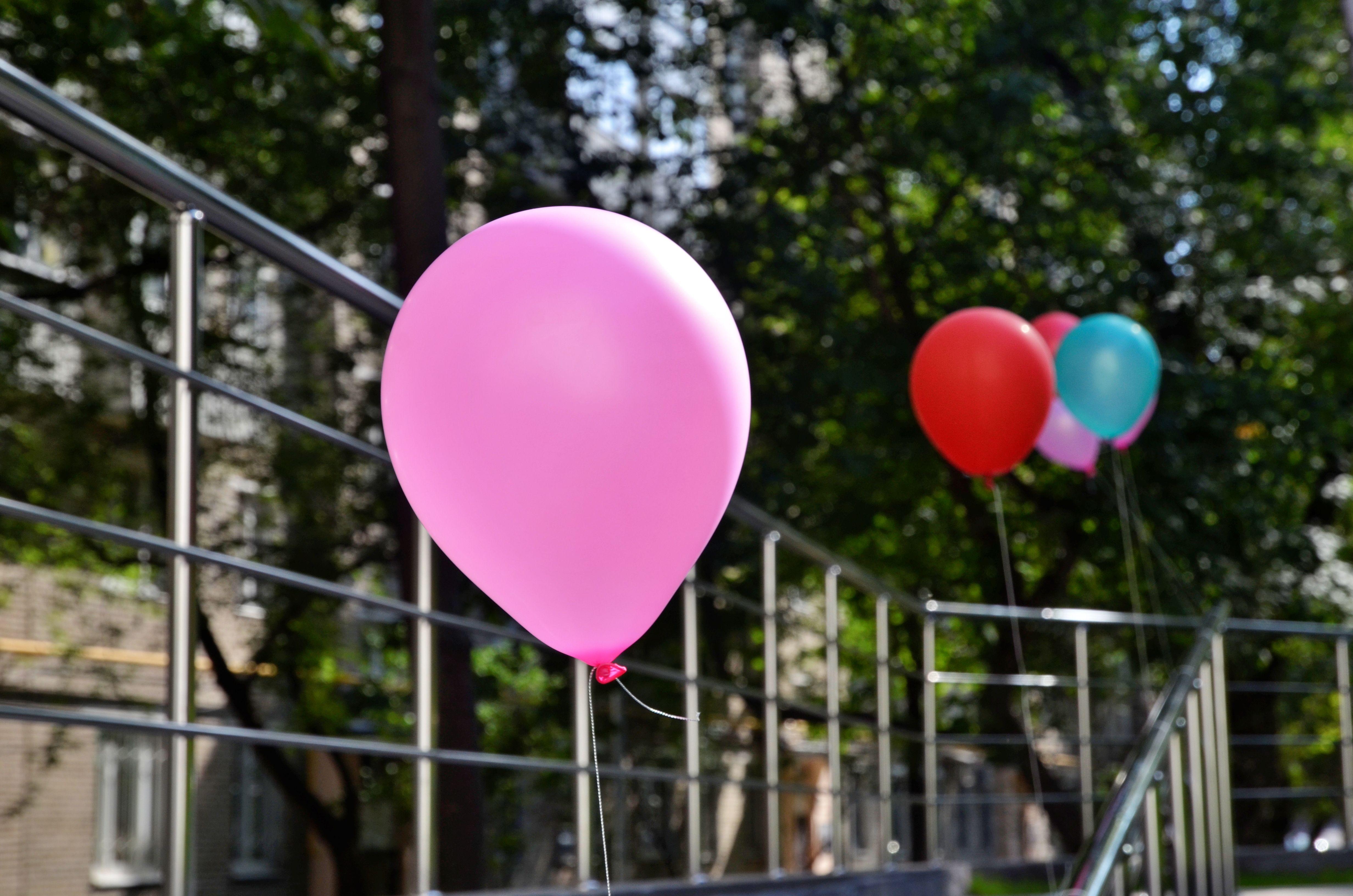 Торт для Троицка: жителям городского округа предложили придумать праздничное угощение