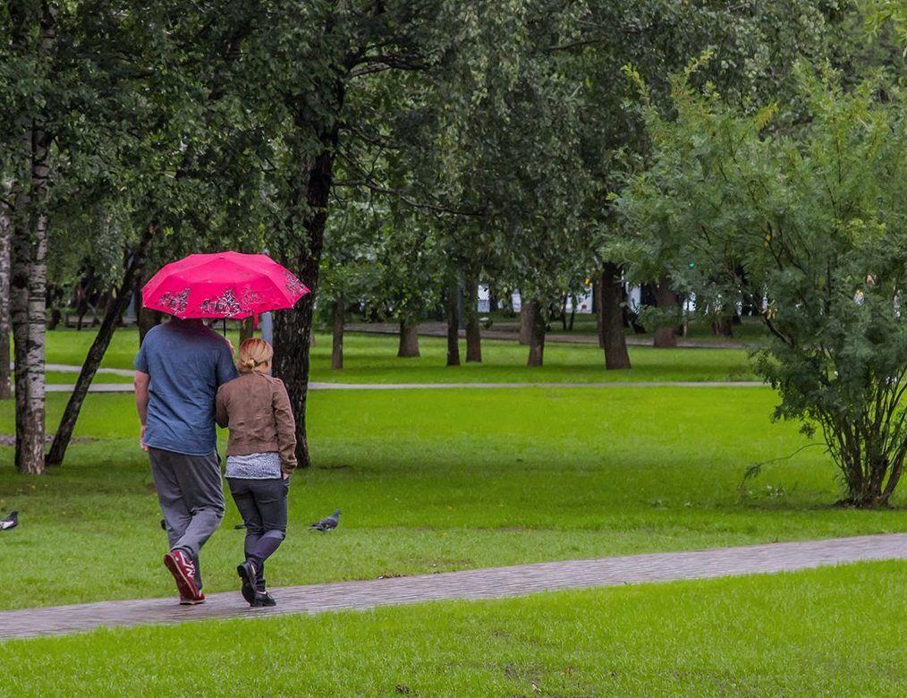 Пасмурная и дождливая погода ожидается в Москве 31 мая