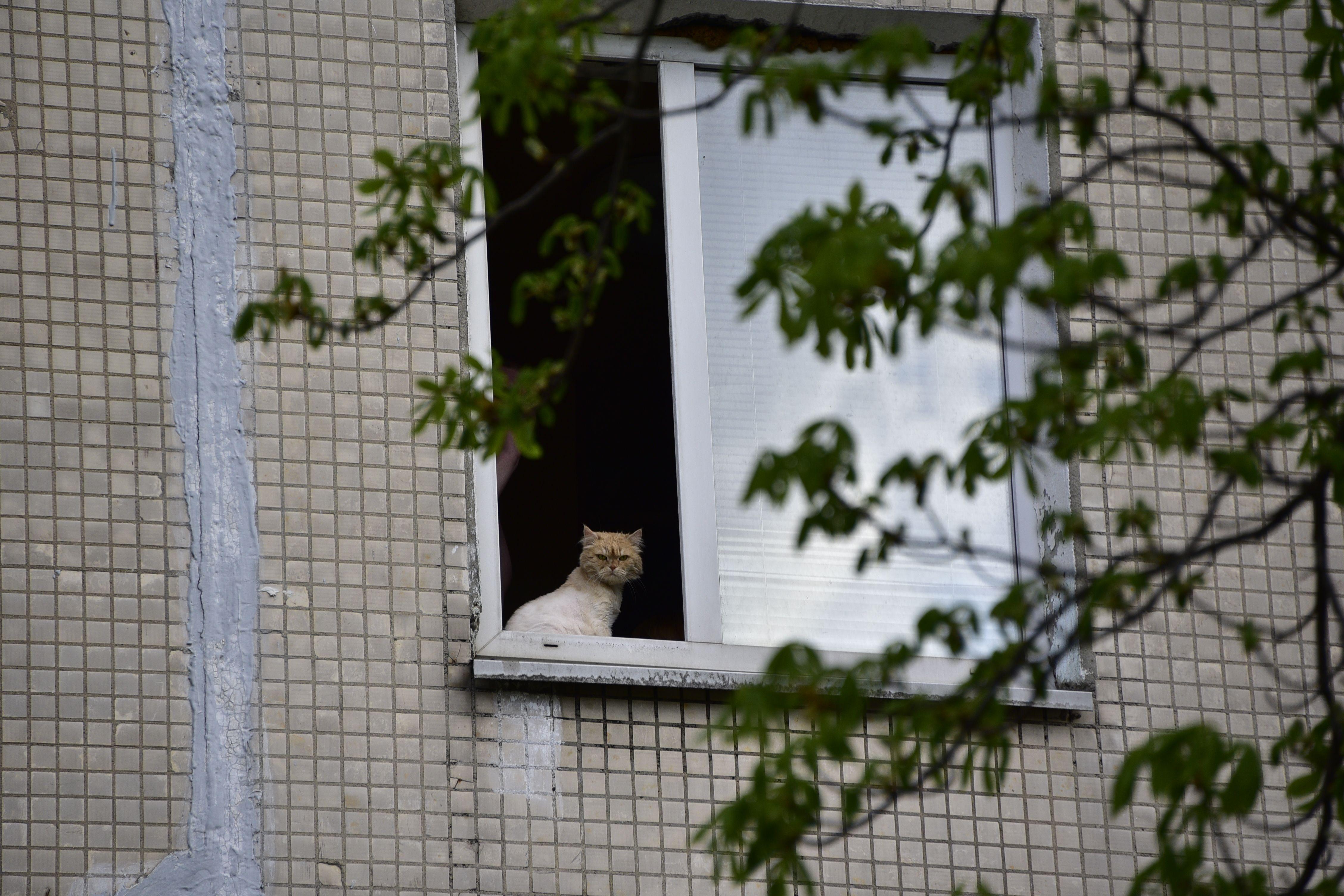 Жилые дома в Щаповском начнут готовить к осенне-зимнему периоду уже сейчас