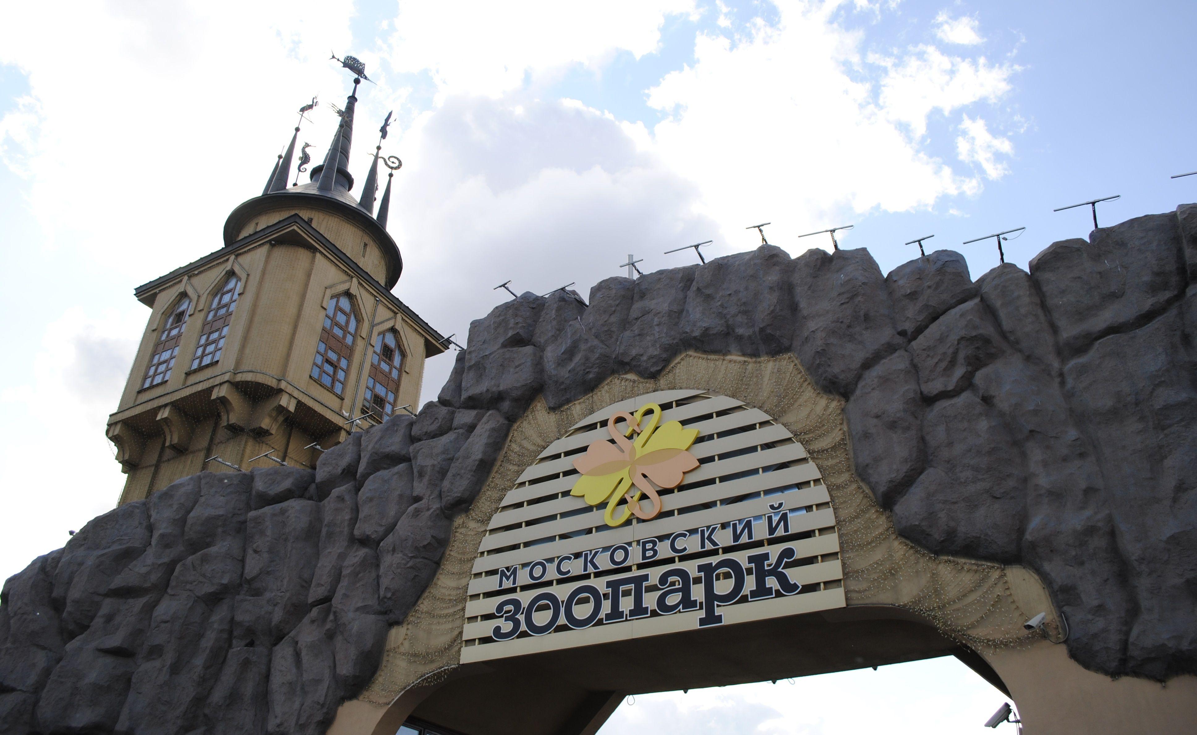 Московский зоопарк откроется на следующей неделе