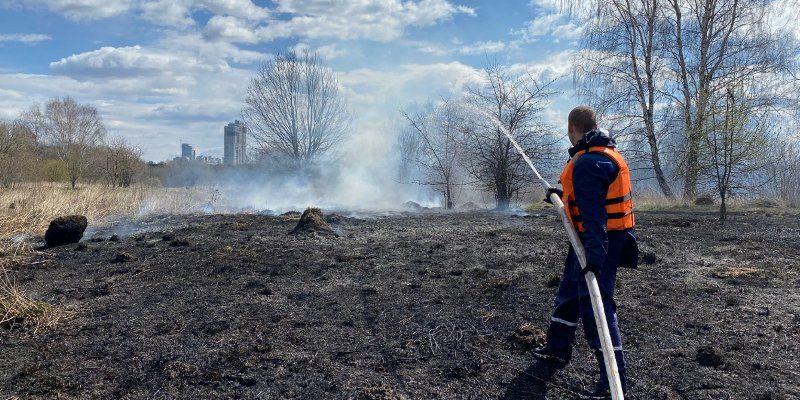 Количество природных пожаров в столице уменьшилось на 40 процентов