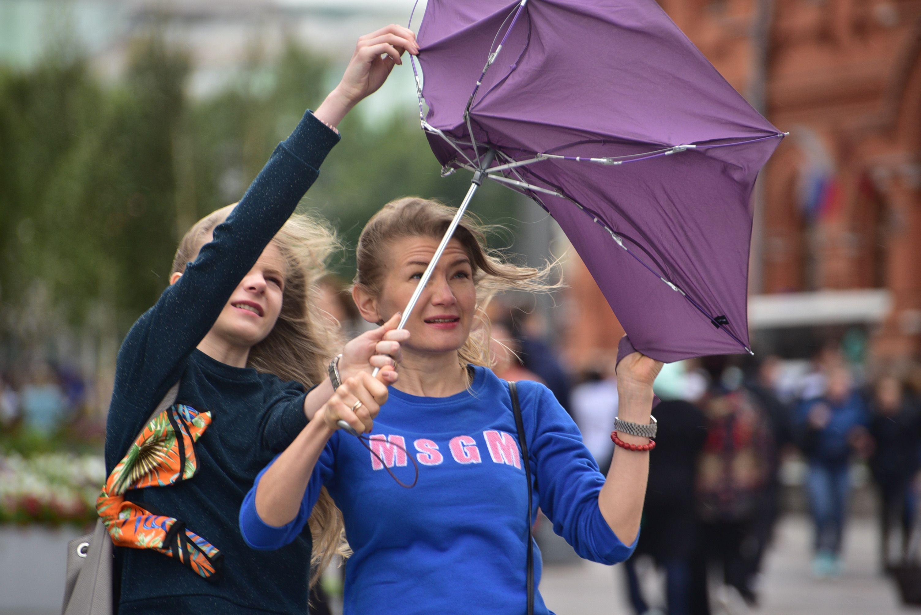 Дожди и порывистый ветер ожидаются в Москве
