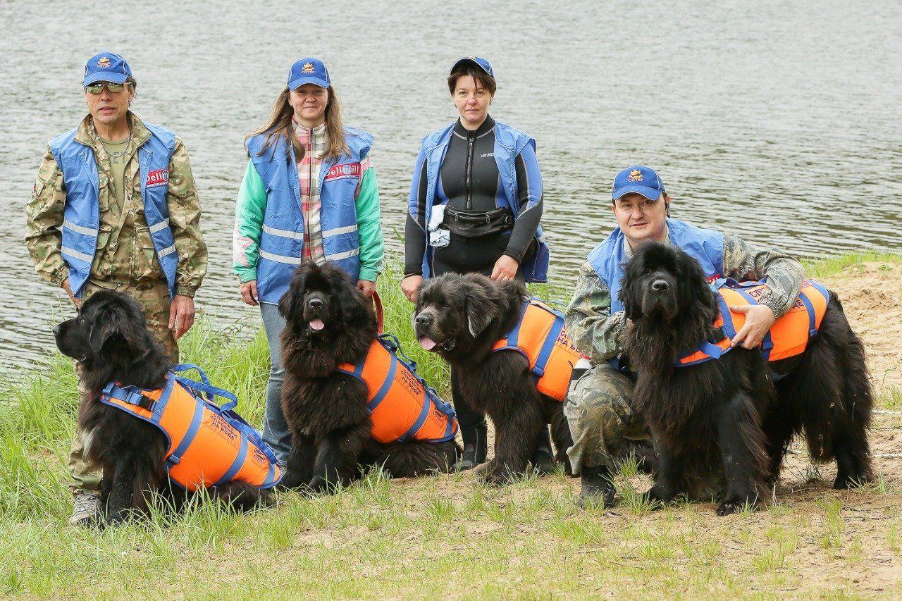 Четвероногие помощники будут дежурить со спасателями на водоемах