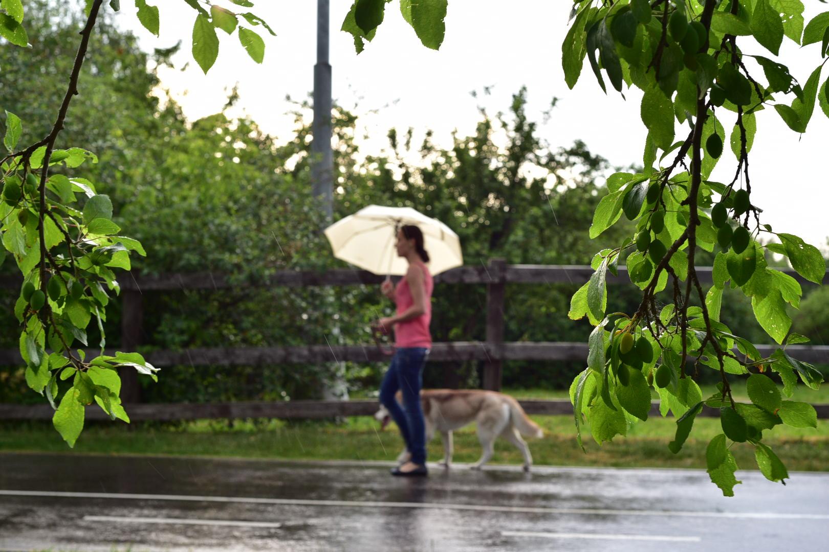 Москвичам пообещали тепло и дожди в воскресенье