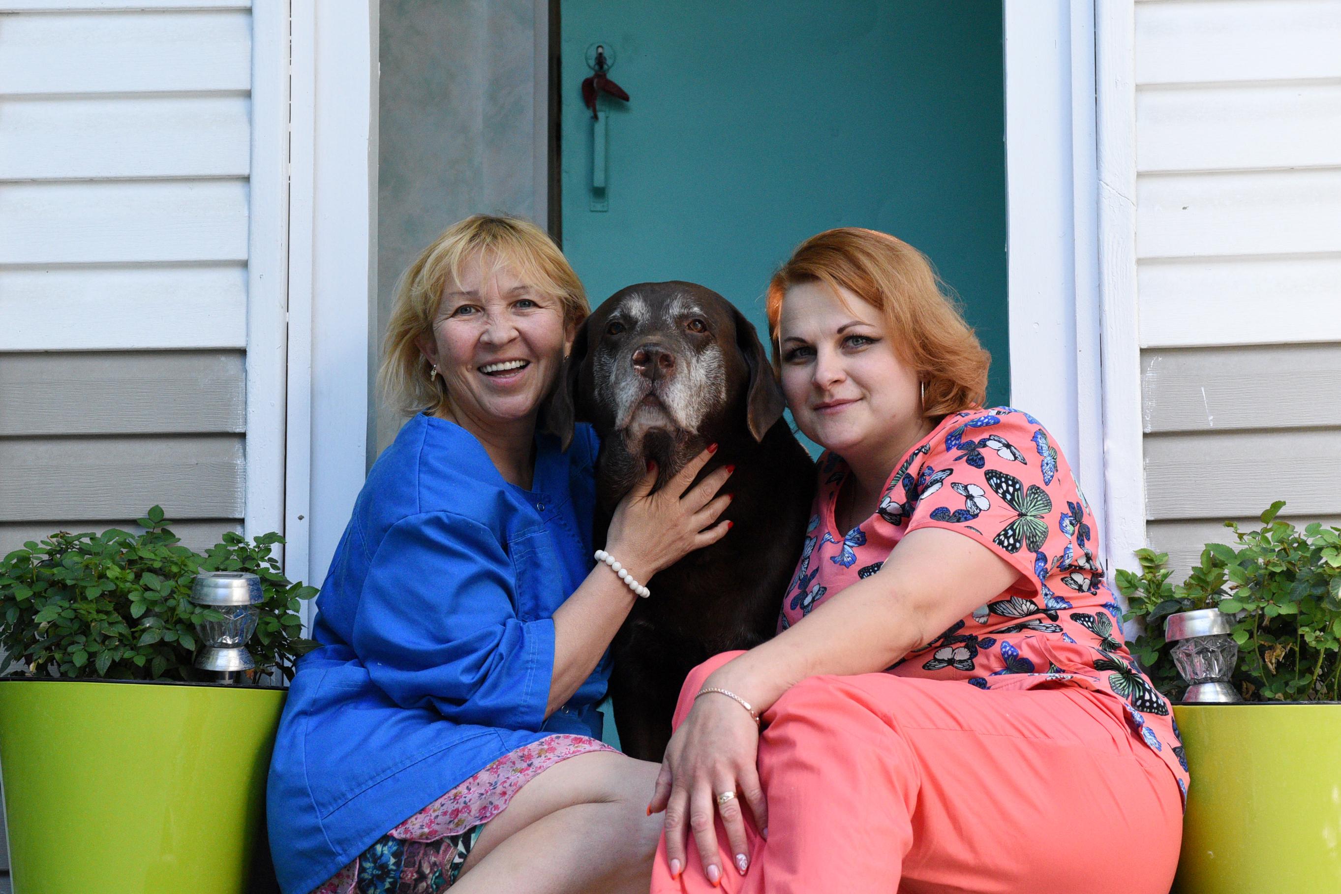 Москвичам рассказали о влиянии собак на душевный комфорт