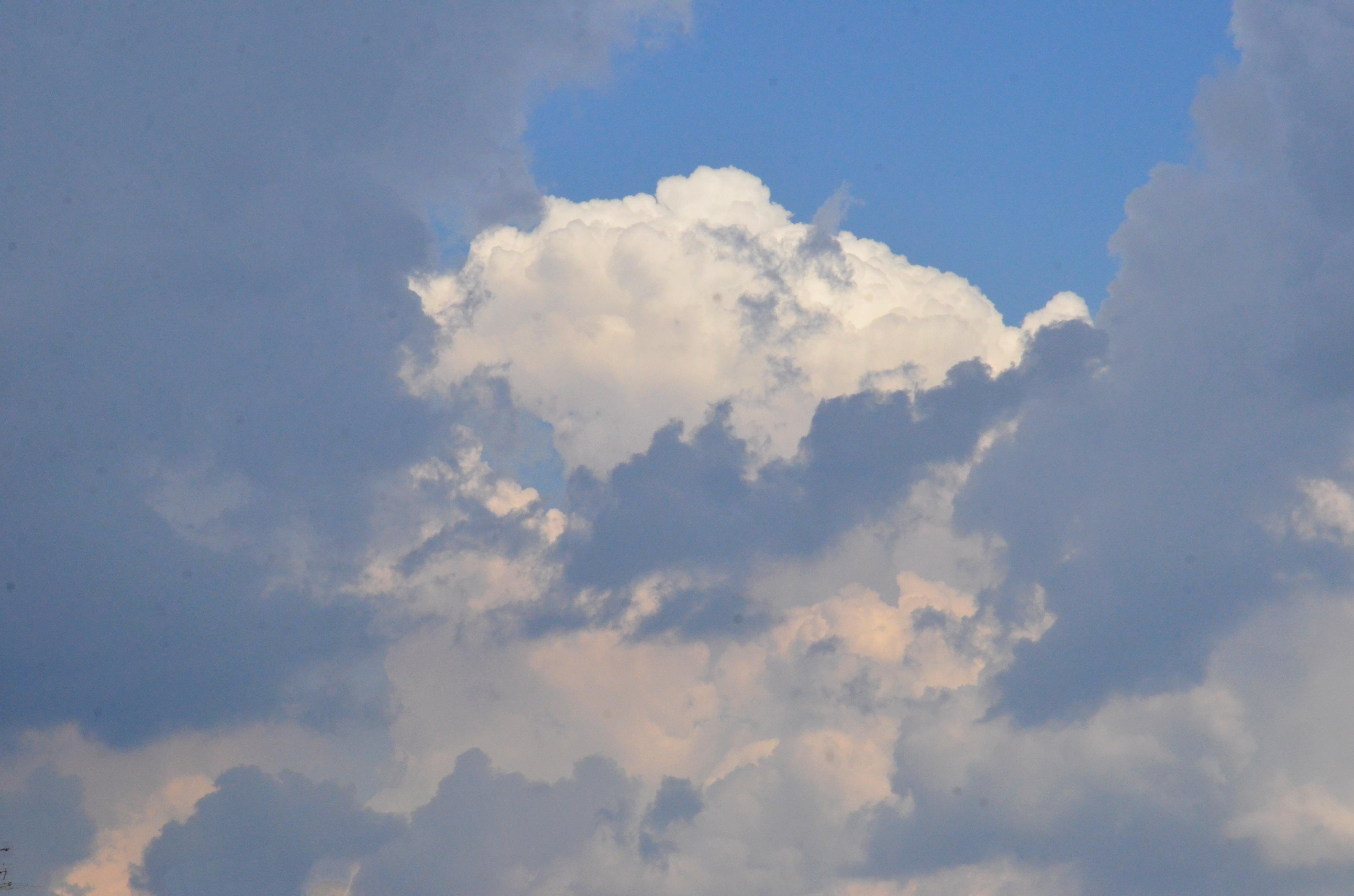 Москвичам рассказали о погоде в субботу