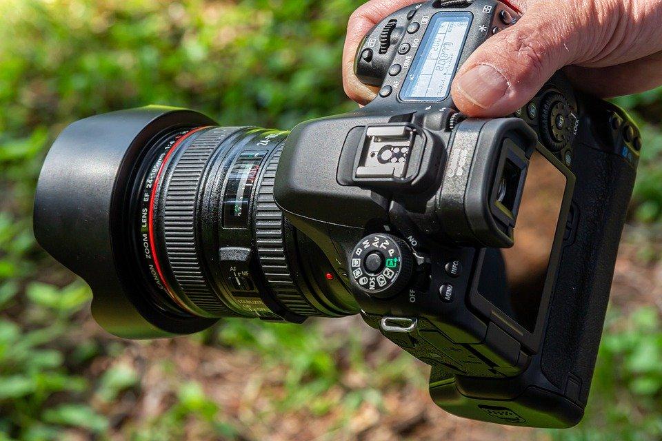 Имя победителя фотоконкурса «Летнее настроение» объявили сотрудники ЦСО «Щербинский»