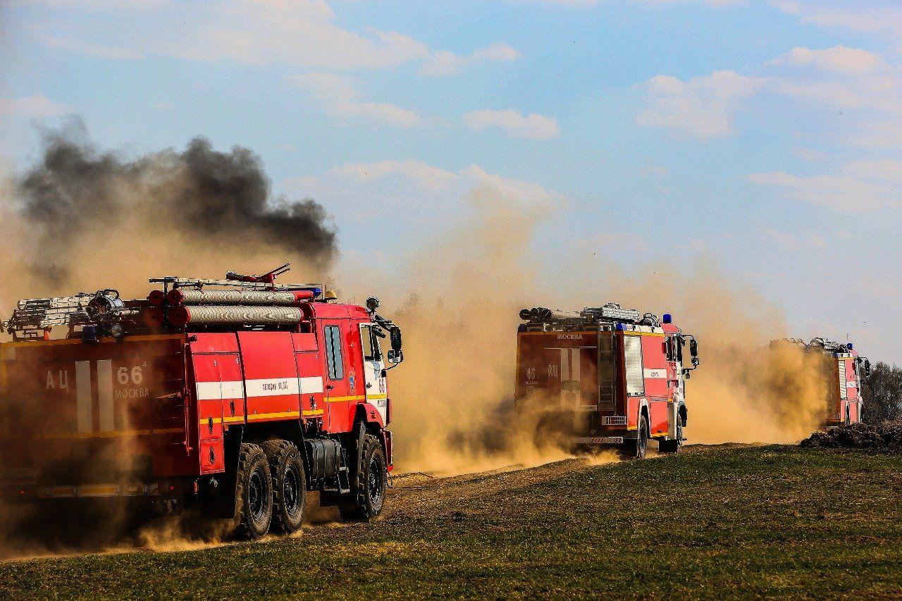 В летний период в столице не зафиксировано природных пожаров