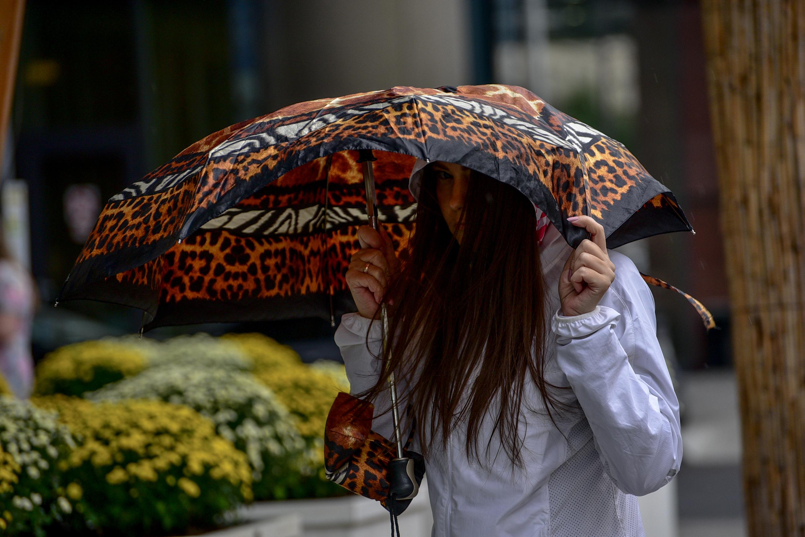 Погода во вторник в Москве будет дождливой