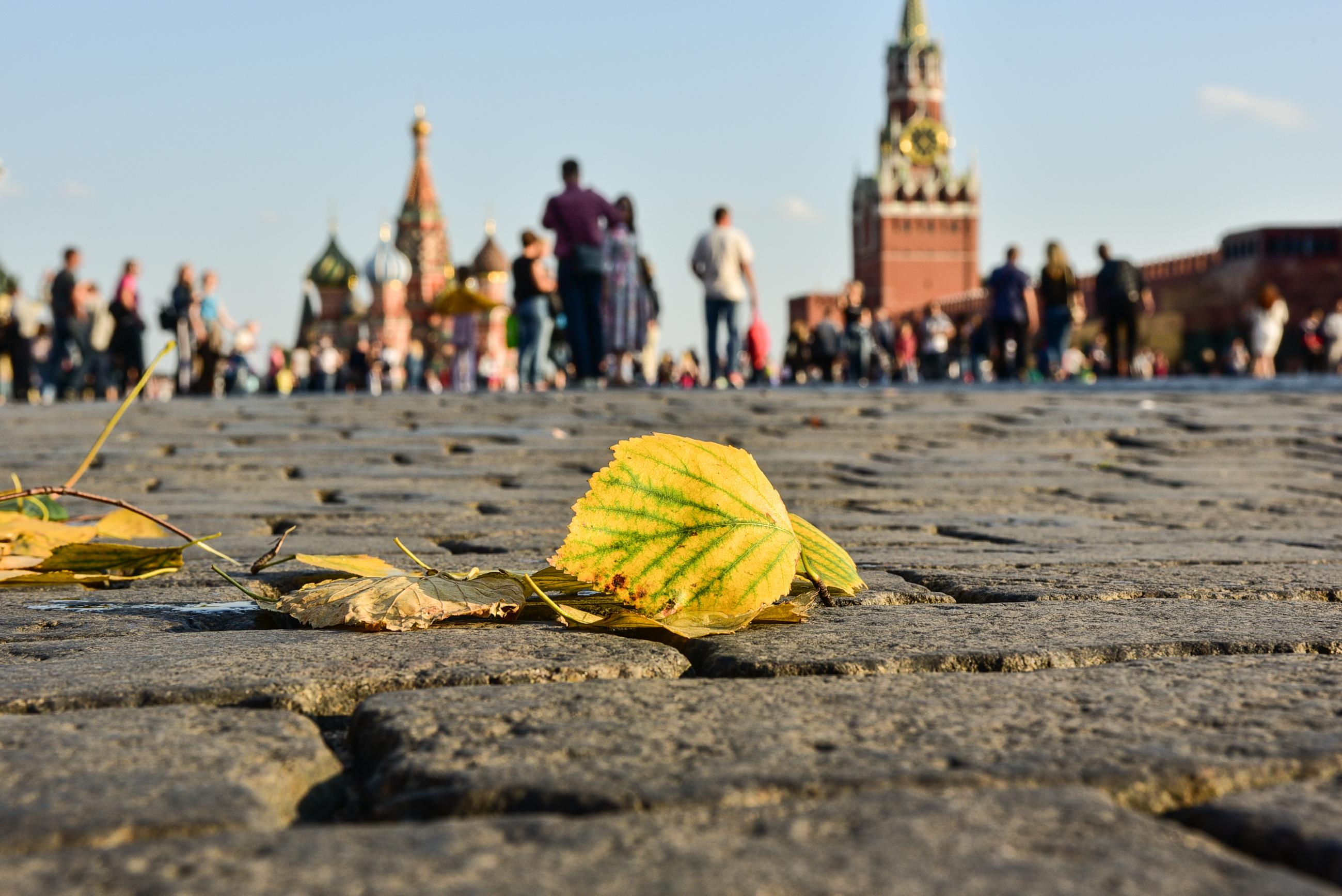 Московская среда будет солнечной