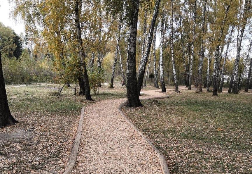 Экологическую тропу проложили в поселении Десеновское