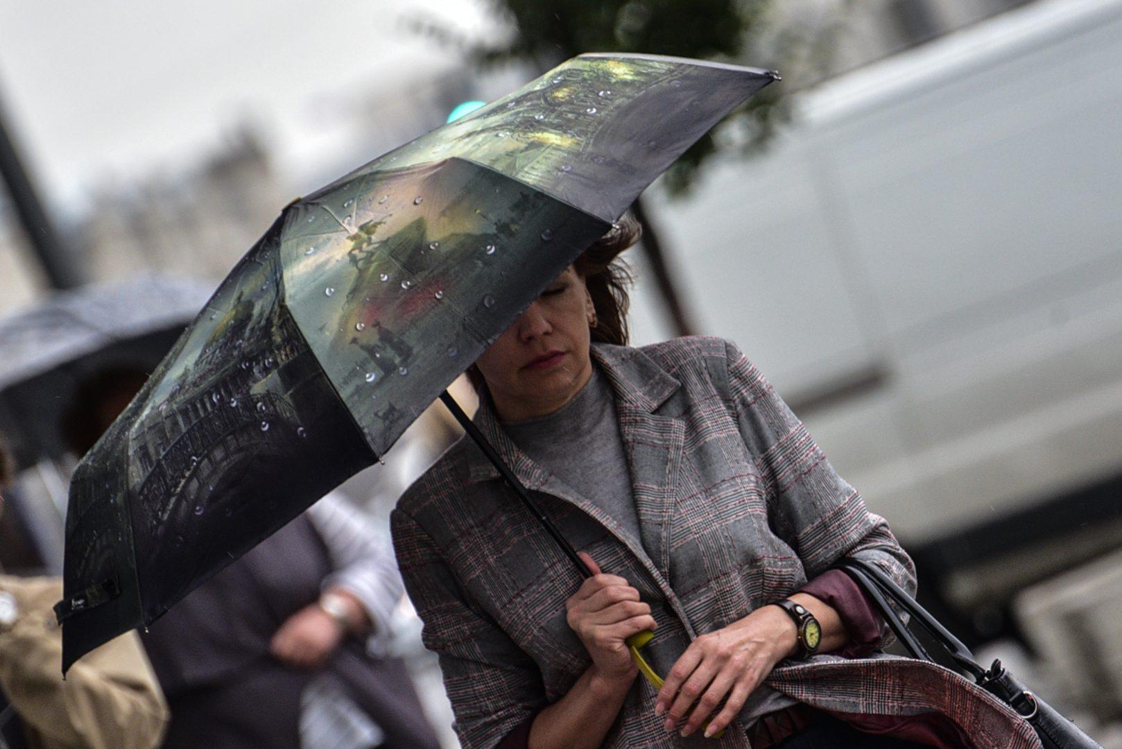 В ближайшее время в столице ожидается усиление ветра. Фото: Пелагия Замятина