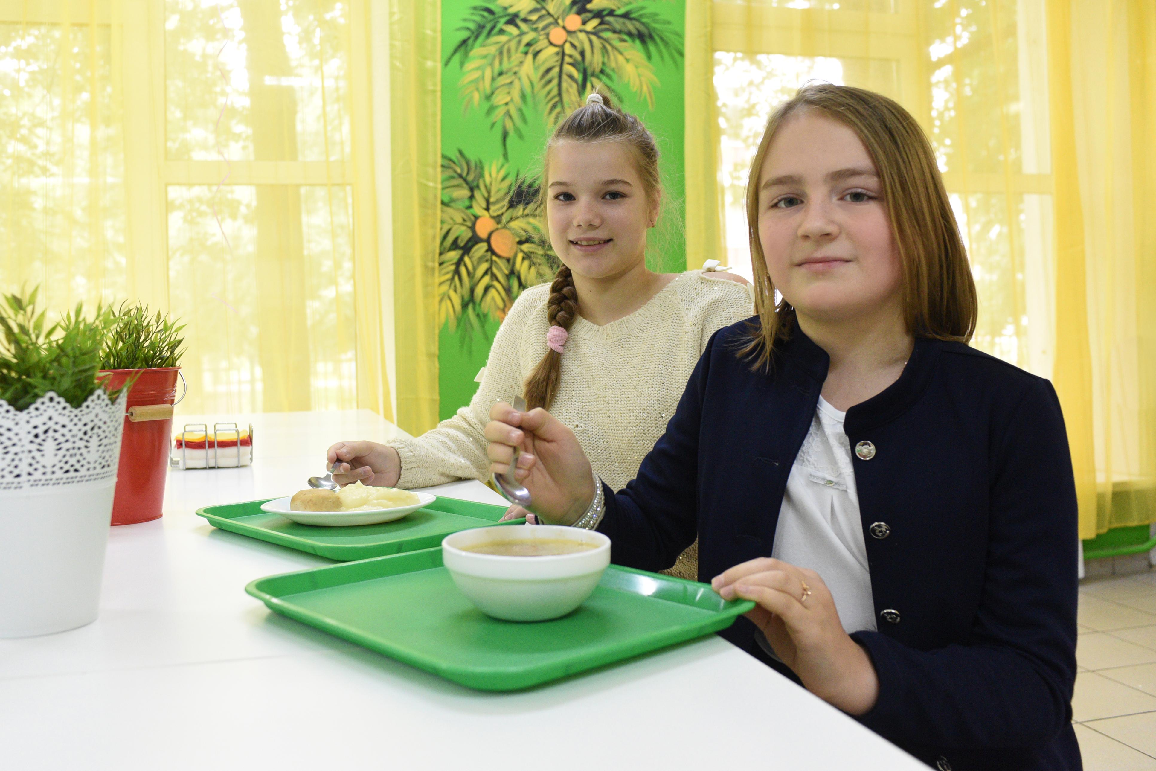 Земельный участок под строительство объекта питания выставят на торги в Новой Москве