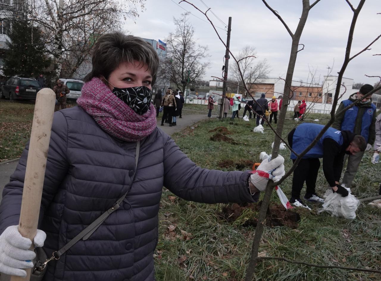 Сад памяти: липовую аллею высадили в Московском