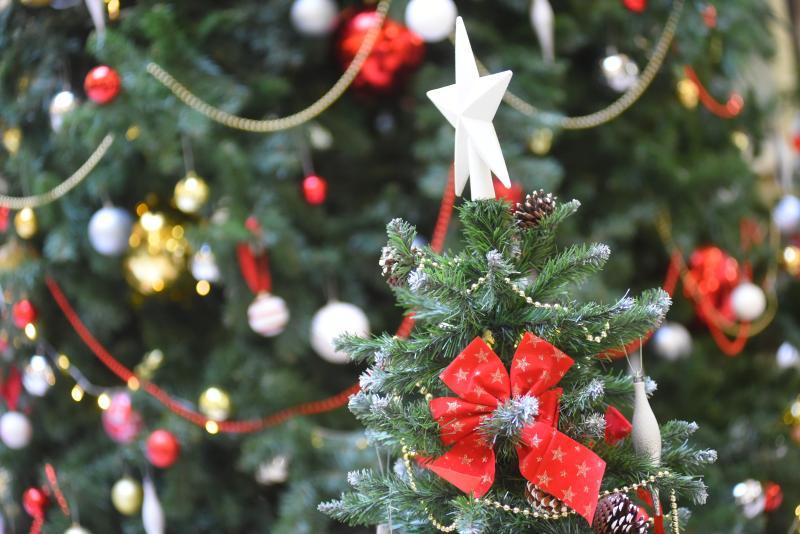 Молодежная палата Рязановского завершила акцию «С днем рождения, Дед Мороз!»