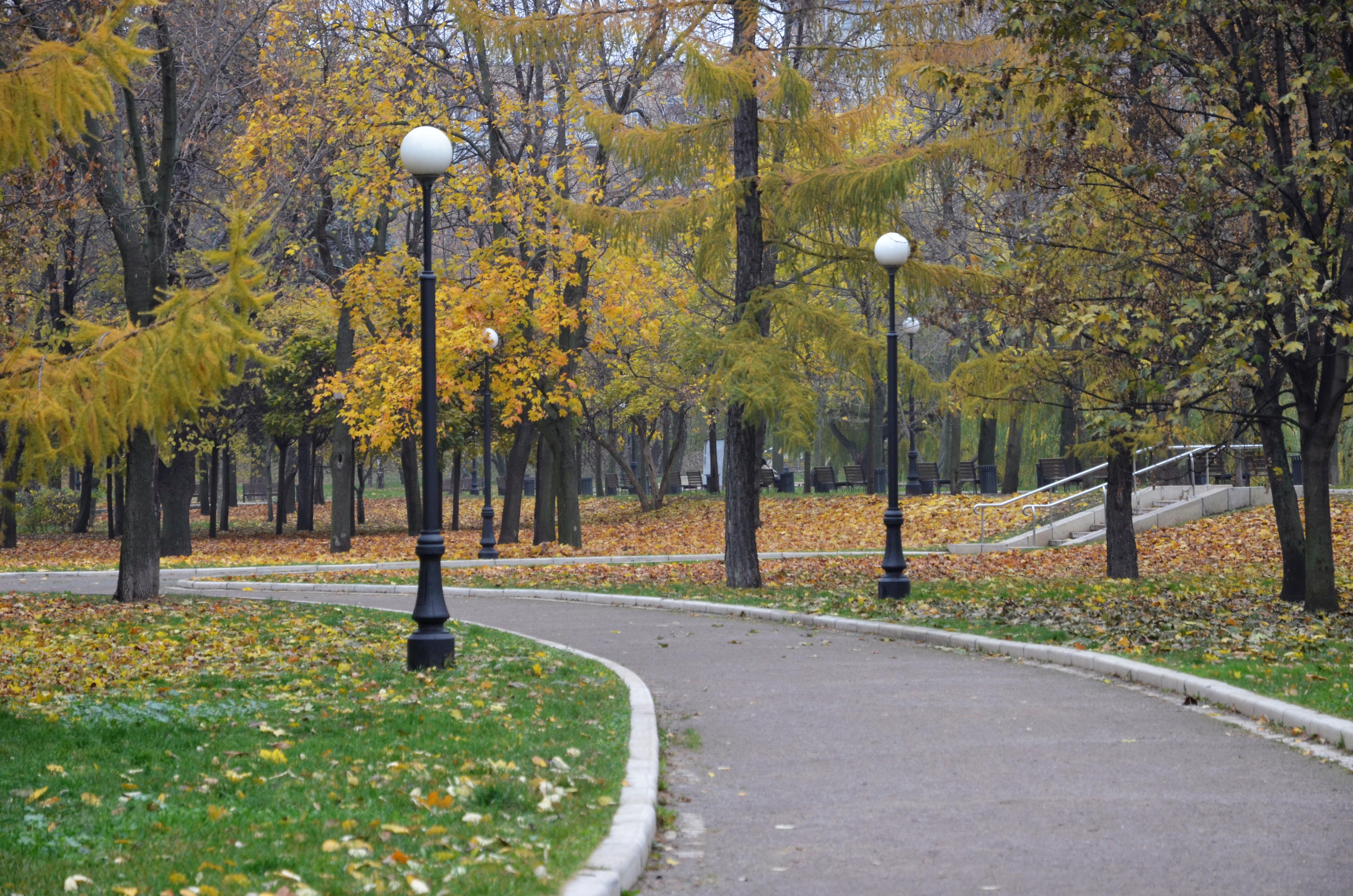 Теплая погода задержится в Москве