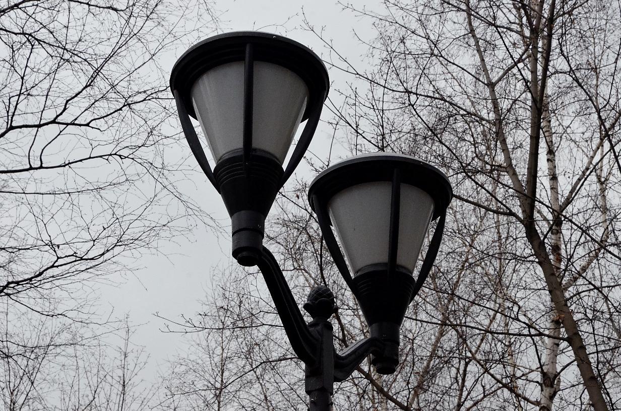 Уличные фонари начали ремонтировать в селе Красная Пахра