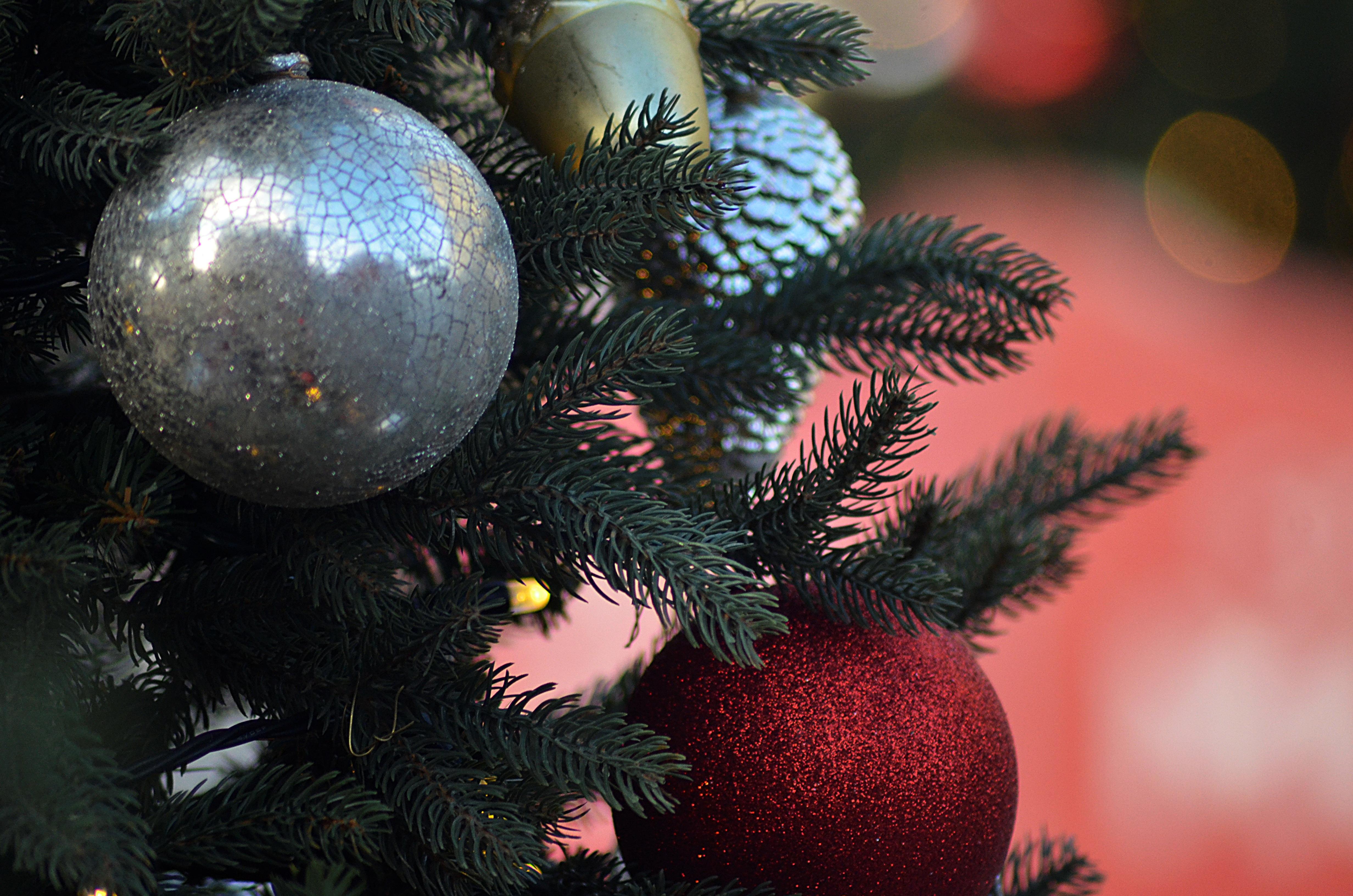 Приключения Айболита в новогоднюю ночь показали в доме культуры Краснопахорского