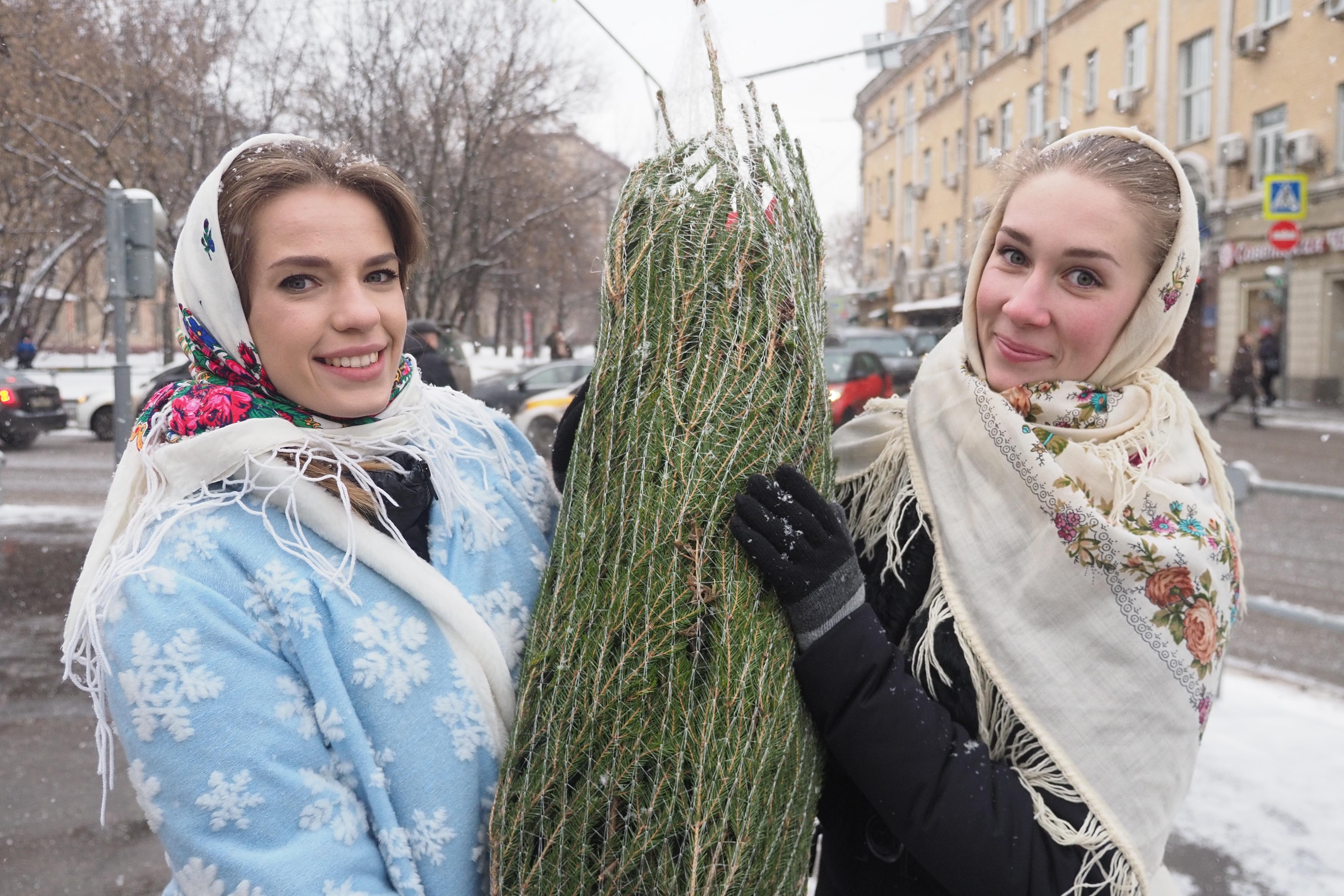 Москвичам предложили выбрать наиболее удобные пункты приема новогодних елок