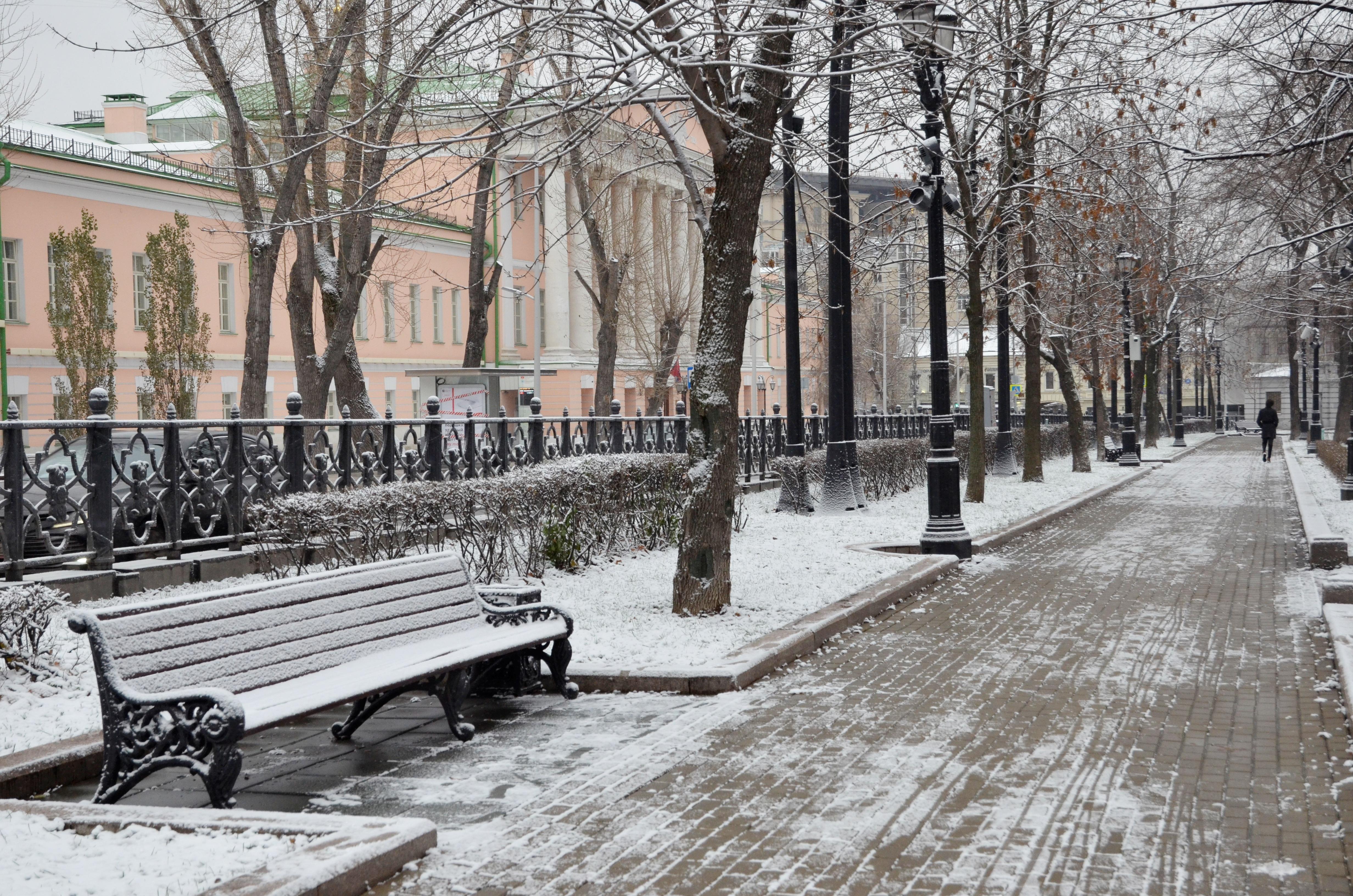 Синоптики прогнозируют снег 4 января в Москве. Фото: Анна Быкова