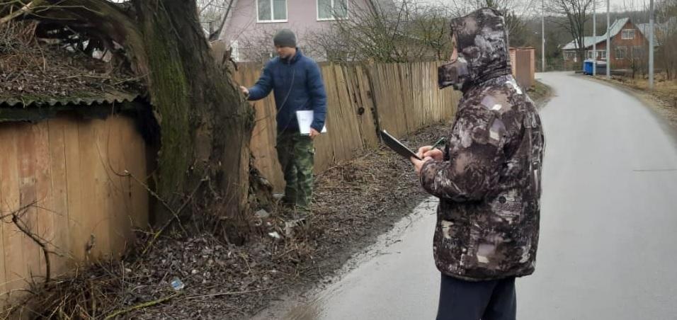 Подготовку документации на летние работы по кронированию и обрезке зеленых насаждений начали в Краснопахорском