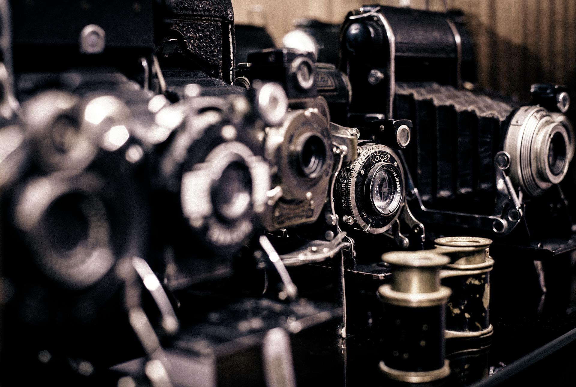 Онлайн-фотовыставку проведут в Щербинке. Фото: pixabay.com