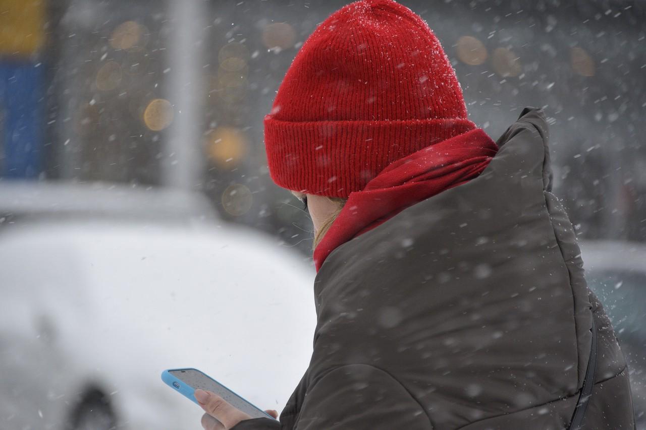Пользователи приложения «Зачетная Москва» заработали свыше пяти миллионов баллов