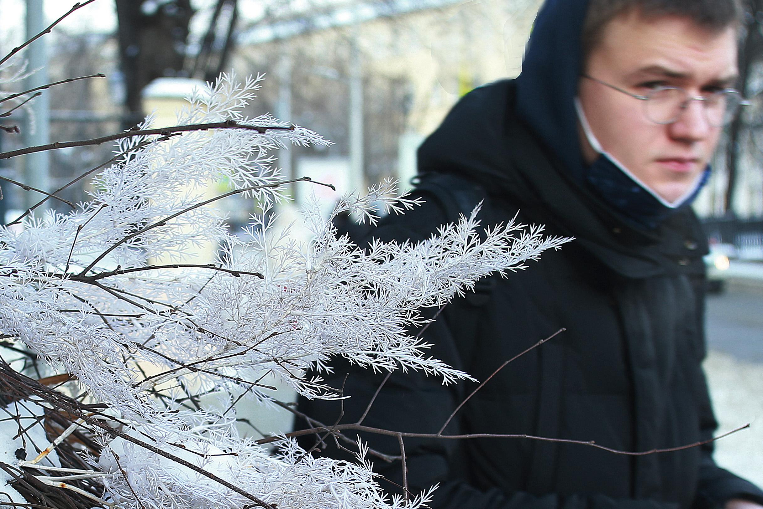 Морозная погода ожидает горожан во вторник