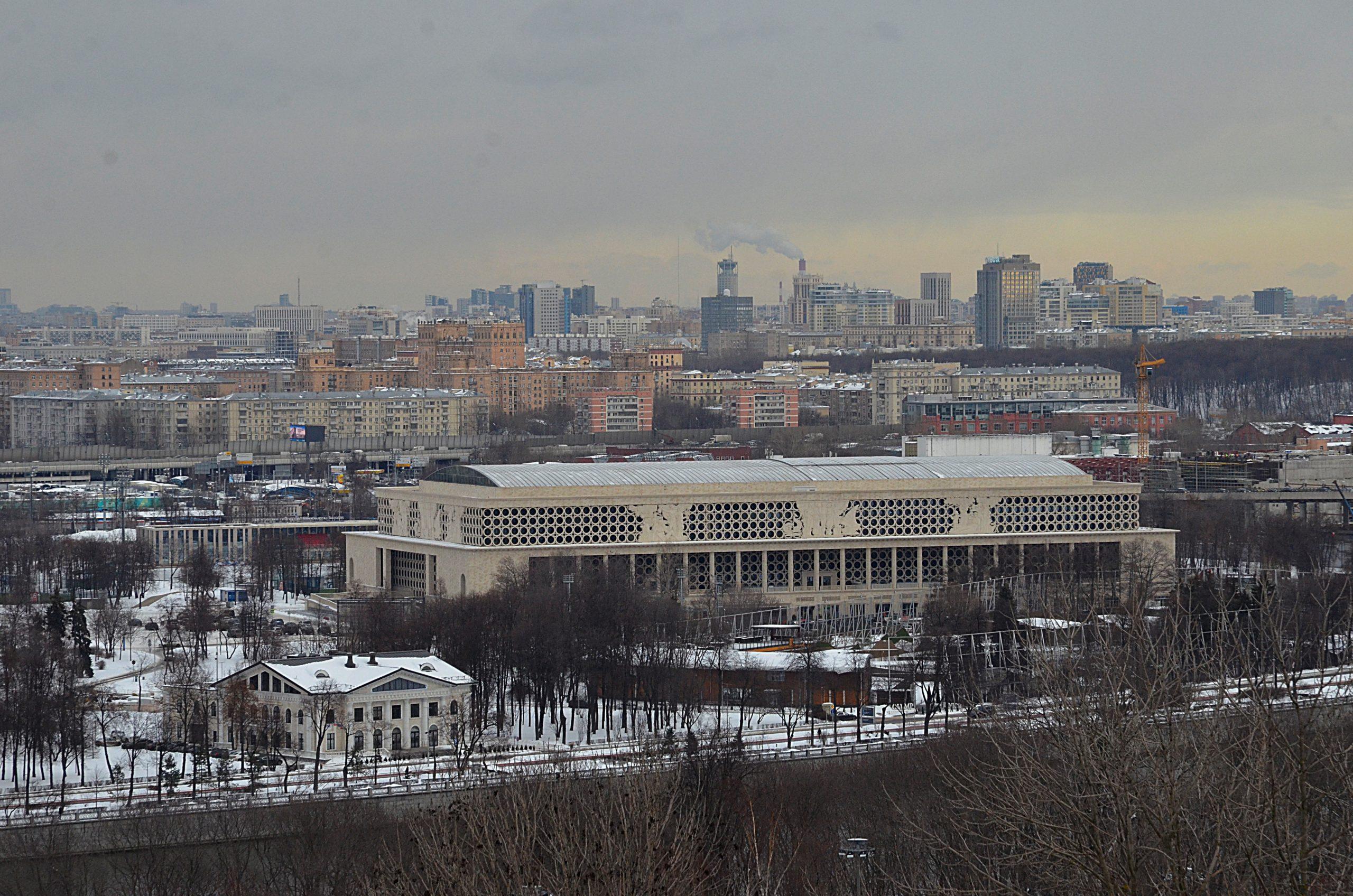 Москвичи через благотворительный сервис на mos.ru помогают многодетным семьям и бездомным животным