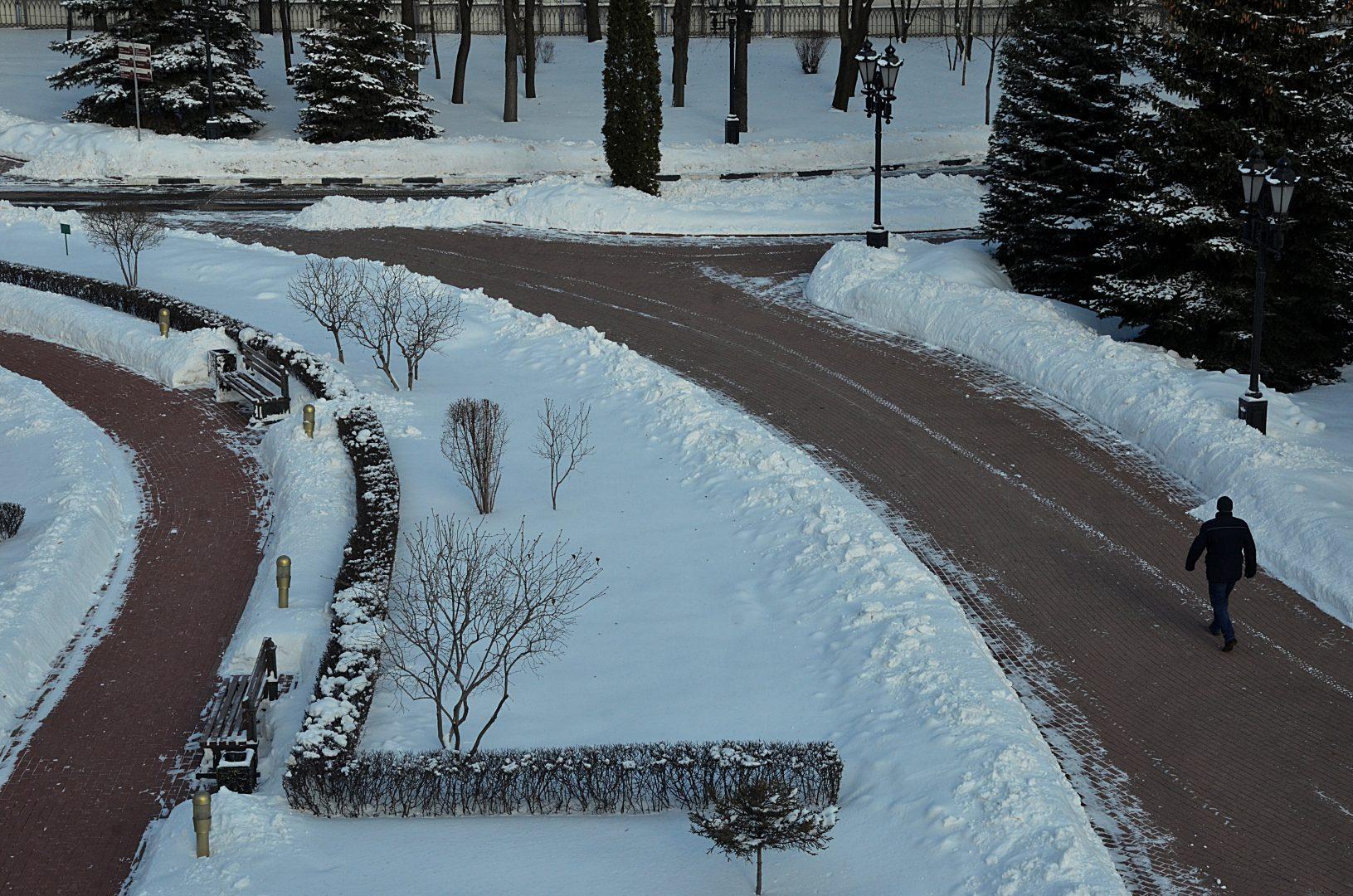 Снегопад в городе ослабнет в субботу. Фото: Анна Быкова